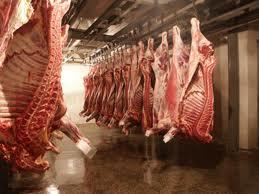 Охлаждение мяса